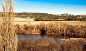 Una sentencia impide una urbanización de 581 viviendas en un monte protegido en Maello
