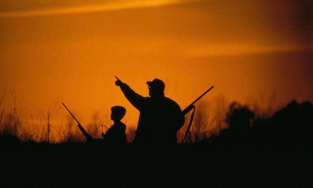Contra la enseñanza de la caza en los centros educativos