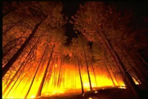 Incendios y calidad del aire