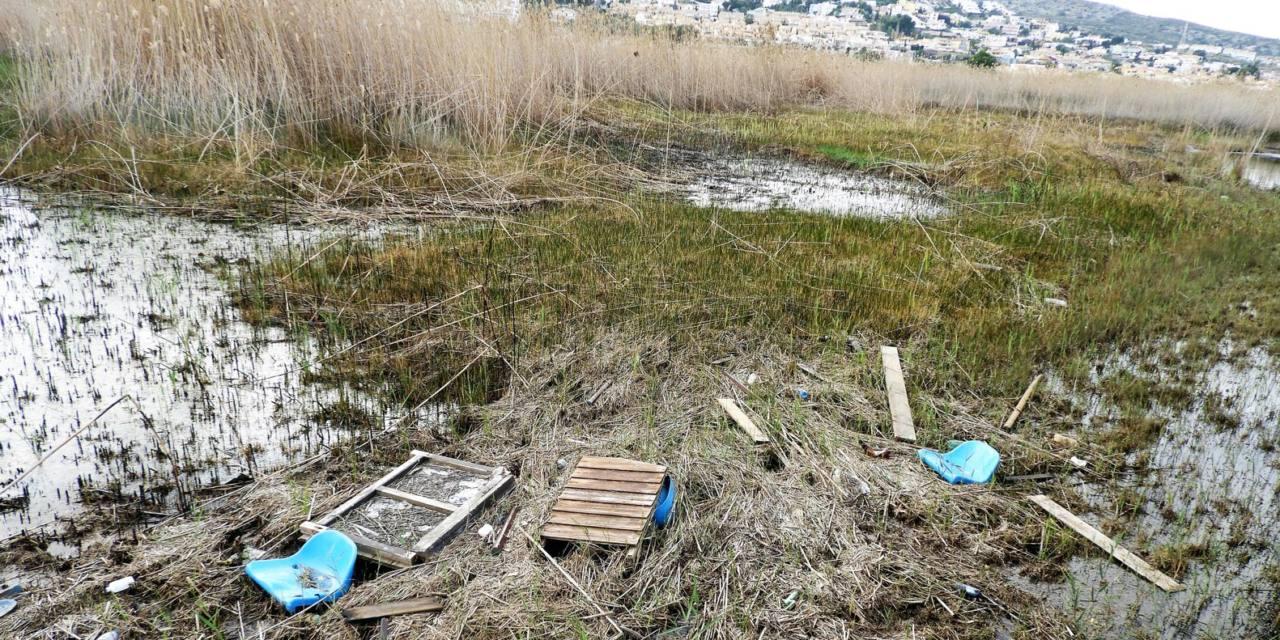 Los humedales del litoral siguen amenazados
