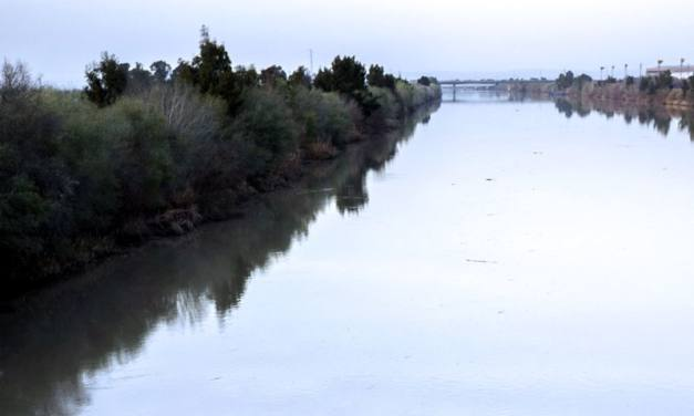 El Guadalquivir sigue con niveles de turbidez que lo abocan al colapso ecológico