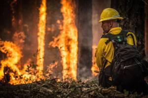 Critican la declaración de época de peligro medio de incendios por ineficaz
