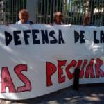 Admitido a trámite el recurso contra la cesión de una vía pecuaria a Defensa