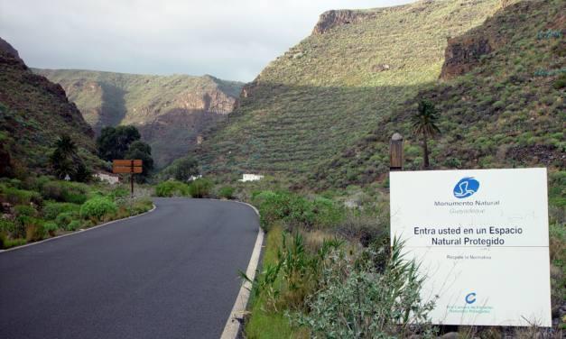 El Cabildo de Gran Canaria quiere construir una nueva carretera para masificar más el Monumento Natural de Guayadeque