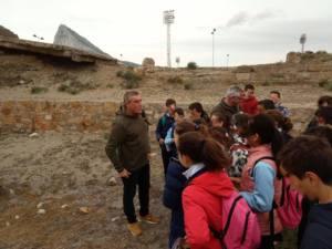 Participación en la oferta educativa en la Línea de la Concepción