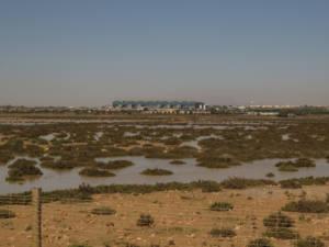 Oposició al projecte d'AENA per ampliar l'aeroport d'Alacant