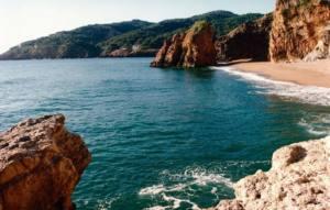 Presenten al·legacions al Pla Director Urbanístic del litoral gironí
