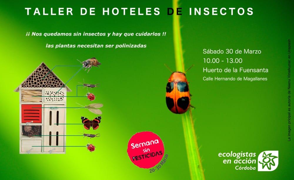 Plantean la construcción de hoteles de insectos