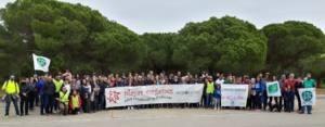 Apoyo masivo contra la urbanización del mayor pinar de la costa de Sancti Petri