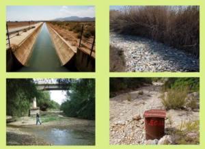 Conclusiones de la Jornada para una gestión ecológica de los ríos de Castilla–La Mancha