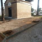 Tala injustificada de árboles centenarios en Tocina y Los Rosales