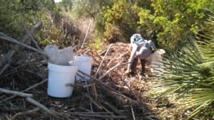 Recogidas más de tres toneladas de residuos en los barrancos de Aiguadoliva y la Barbiguera