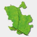 Propuestas ecologistas de cara a las elecciones del Ayuntamiento de Madrid