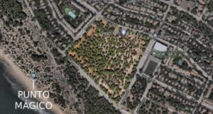 Se organiza actividades contra la urbanización del pinar de Sancti Petri