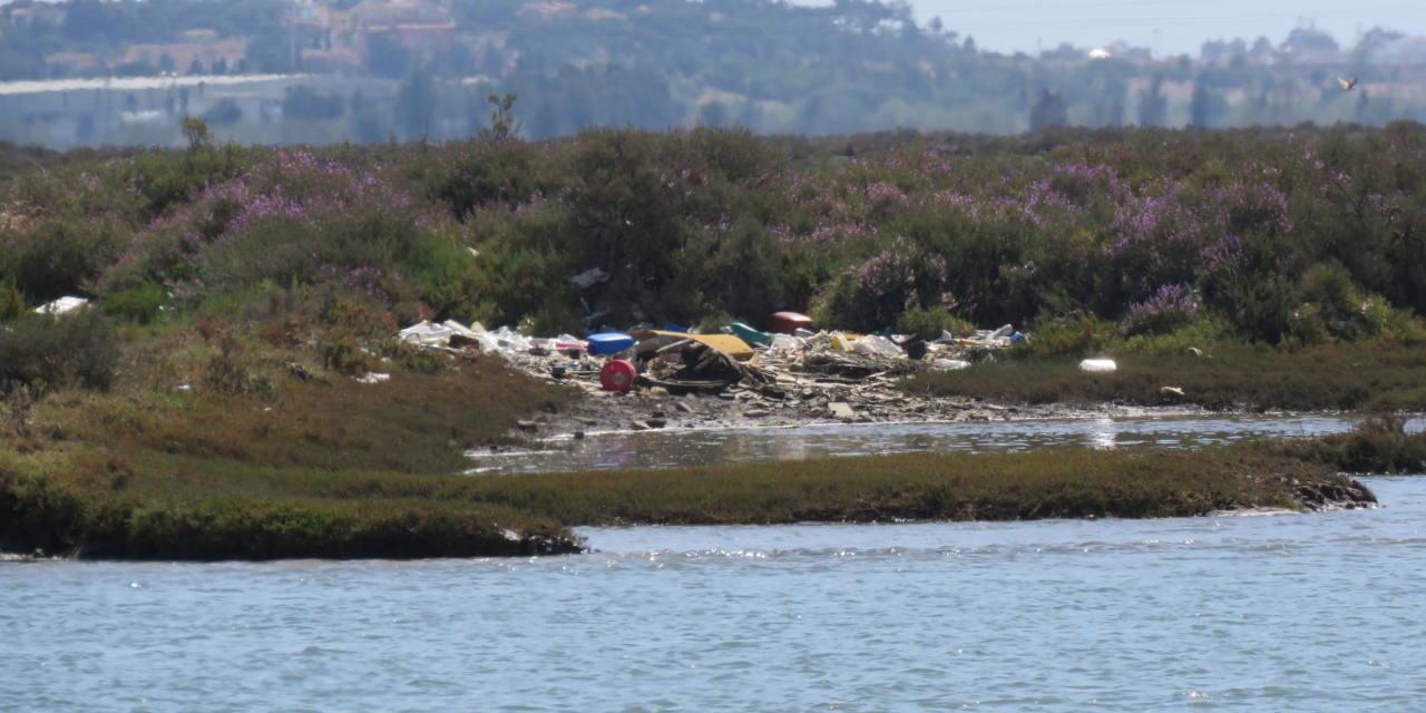 Parar el vertido de cajas de poliespan y otros residuos