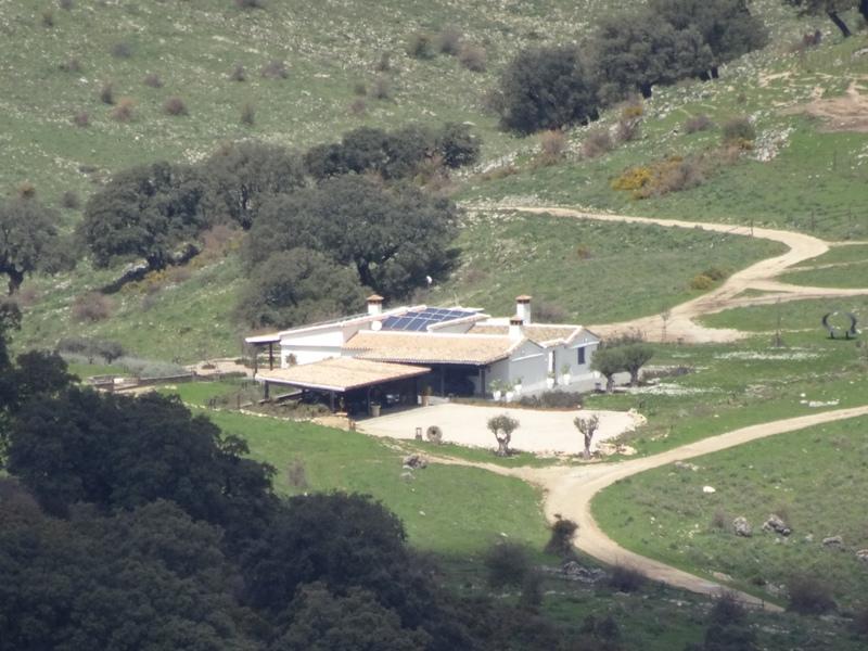 Pretenden construir una mansión de 800 m2 en pleno Parque Natural Sierra de Grazalema