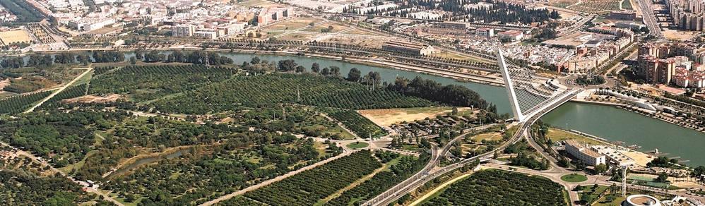foto aerea del Parque del Alamillo